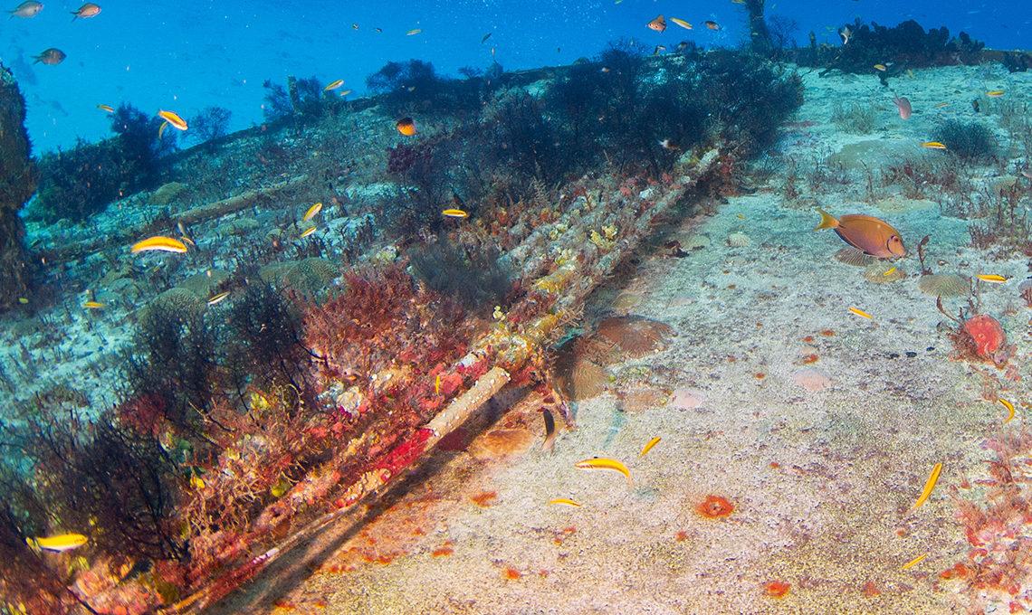 undersea fibre optic cables